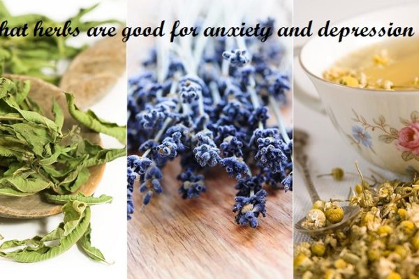 what herbs are good for anxiety and depression